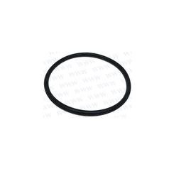 RecMar Yamaha Parsun F50 & F60 Filter Cup Seal (PAGB/T3452.1-32.5x1.8)