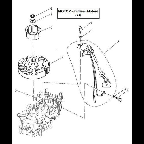 Yamaha/Parsun Buitenboordmotor F2.5/F2.6 Ignitor Assy Onderdelen