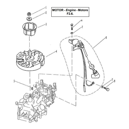 Yamaha / Parsun Outboard Engine F2.5 / F2.6 Ignitor Assy Parts