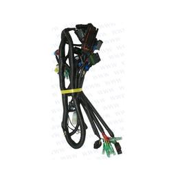 RecMar Parsun F50 & F60 WIRING HARNESS, ECU CONTROL (PAF60-05000900)