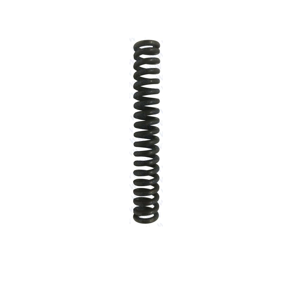 RecMar Parsun F50 & F60 SPRING, CLUTCH (PAF60-04020002)