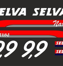 Selva 9.9 HP year range 2005-2006  sticker set