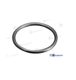 Spare O-ring for water filter