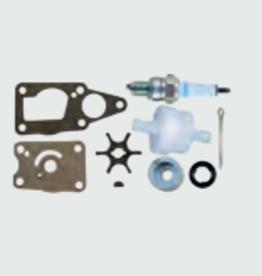 RecMar Suzuki DF4/DF5/DF6 (2002-10) onderhoudskit (REC17400-91860)