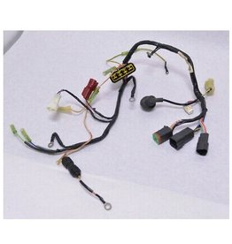 Johnson 25-30HP 4-Stroke Wiring Harness Assembly (PL Models) (5034687)