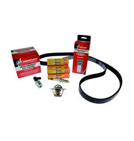 Mercruiser MerCruiser 4.5L MPI Alpha (2014+) 300 Hour Service Kit (8M0147066)