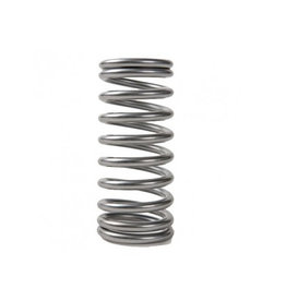Yamaha / Mercury / Parsun Spring valve FT, F20, F25, F50, F60 (ALL) (1998-08) 51Y-12119-00	24-823678