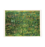 Lenticular card Van Gogh Patch of grass
