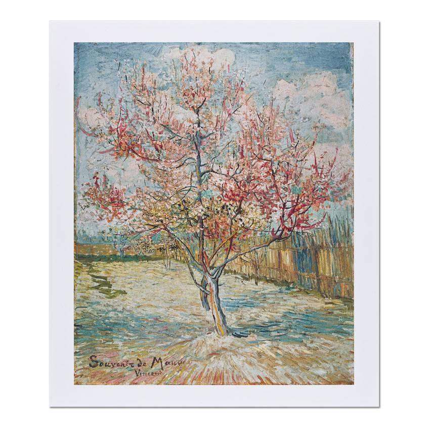 Reproduction 'Pink Peach Trees (Souvenir de Mauve)' - Vincent van Gogh