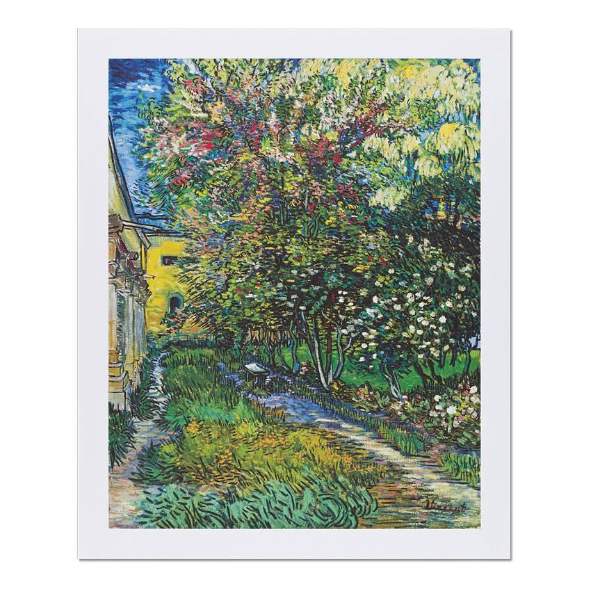 Reproductie Van Gogh De tuin van de inrichting