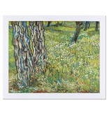 Reproductie Van Gogh Boomstammen in het gras