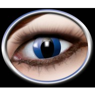 Halloweenaccessoires: Contactlens Cat-eye blue