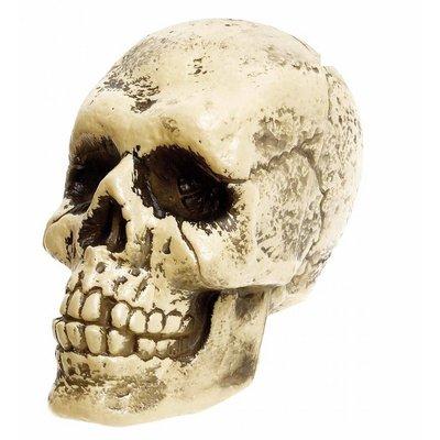 Levensgrote nep schedel als Halloween decoratie