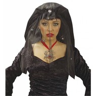 Halloweenaccessoires sluier met diamanten en spinnen