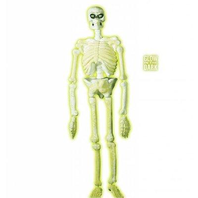 Halloweenaccessoires 3d plastic laboratorium skelet 150cm