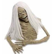Halloweenartikelen torso van een zombie