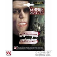 Halloweenaccessoires: Dracula-tanden