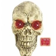 Halloweenaccessoires: Schedel 25 cm