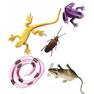 Halloweenaccessoires: Set van 12 griezel dieren