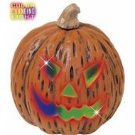Halloweenaccessoires pompoenveranderend licht 20x23cm