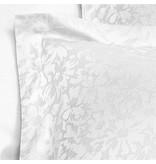 De Witte Lietaer Azalea white