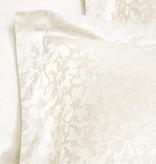 De Witte Lietaer Azalea ivory