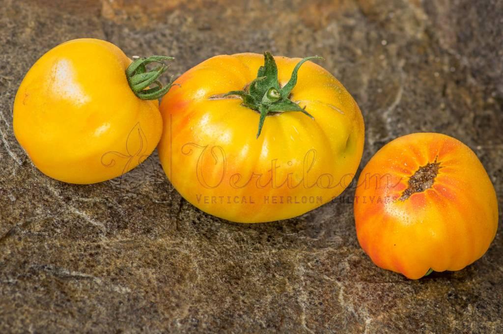 E.T - E.T Tomato
