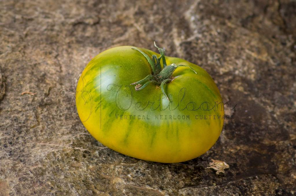 Lime Green Salad