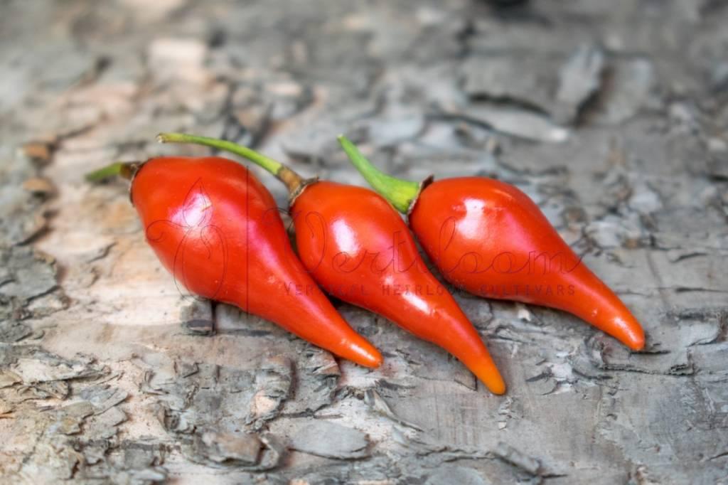 Biquinho Vermelho