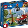 Lego Lego City Barbecuebrand Blussen 60212