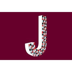 Cristallo Design Stoer, Letter J