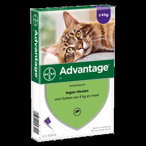 Bayer Advantage kat 80 - 4 pip