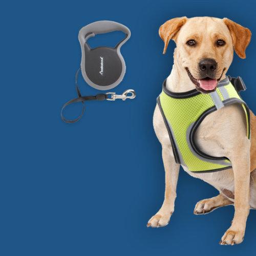 Accessoires voor je hond