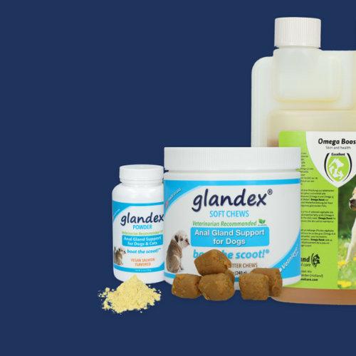 De beste supplementen voor je hond