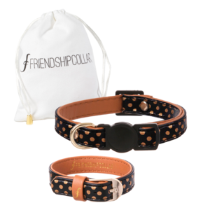 Friendship Collar Dotty Moggy Cat & You
