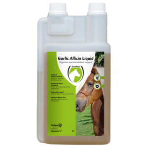 Garlic Allicin Liquid EU (Knoflook vloeibaar)