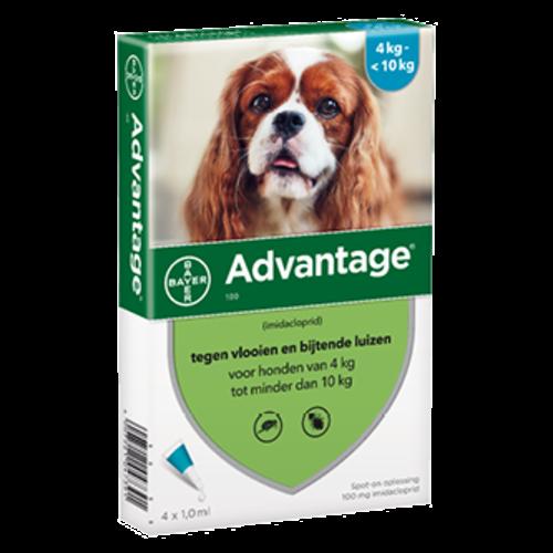 Advantage hond 100 - 4 pip