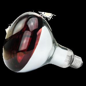 Lamp 150 W infrarood Hard Glas