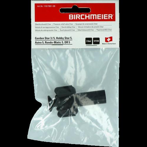 Birchmeier Birchmeier Veiligheidsventiel 3 bar