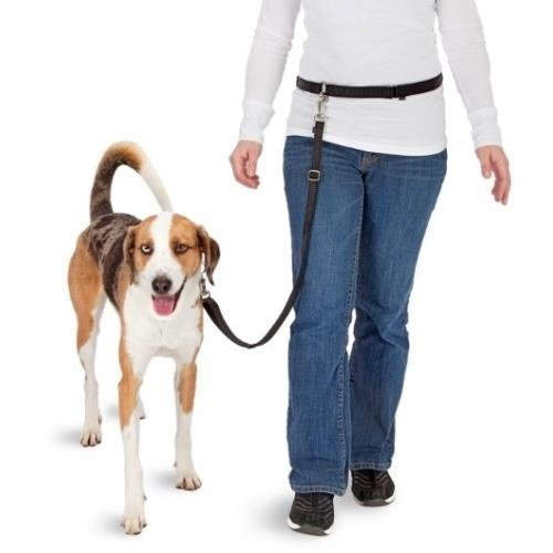 Pawise Hands Free Doggy Bike Jogger Kit