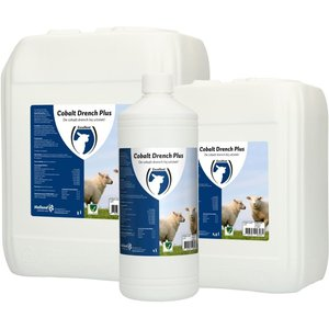 Holland Animal Care Cobalt Drench PLUS