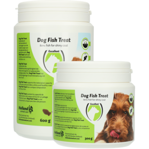 Holland Animal Care Dog Fish Treat