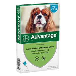 Bayer Advantage 100 hond (4 - 10 kg) - 4 pip