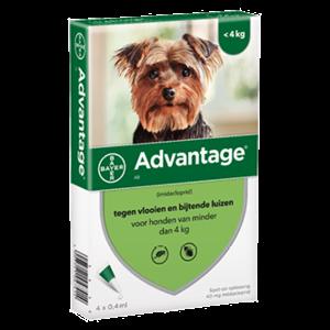 Bayer Advantage 40 hond (< 4 kg) - 4 pip