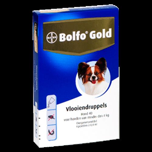 Bayer Bolfo Gold 40 hond (<4 kg) - 4 pip