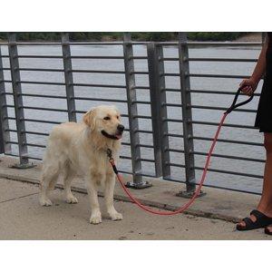 KONG KONG Rope leash One Size Blue