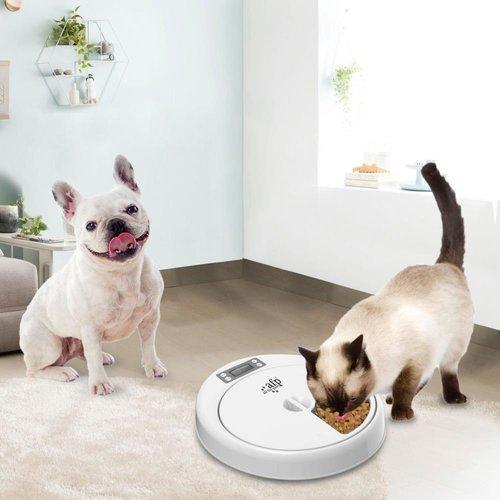 AFP AFP Lifestyle 4 Pet-5 Meal Pet Feeder