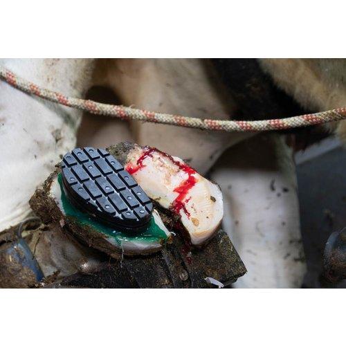 "Holland Animal Care Easy Hoof Block rubber ""comfort"""