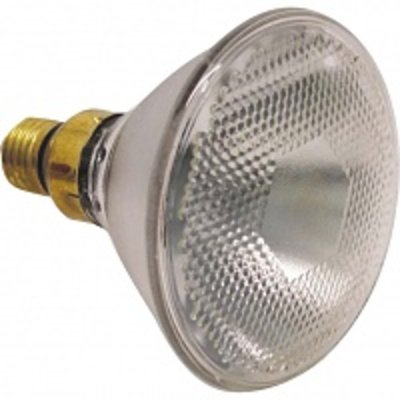 biggenlamp