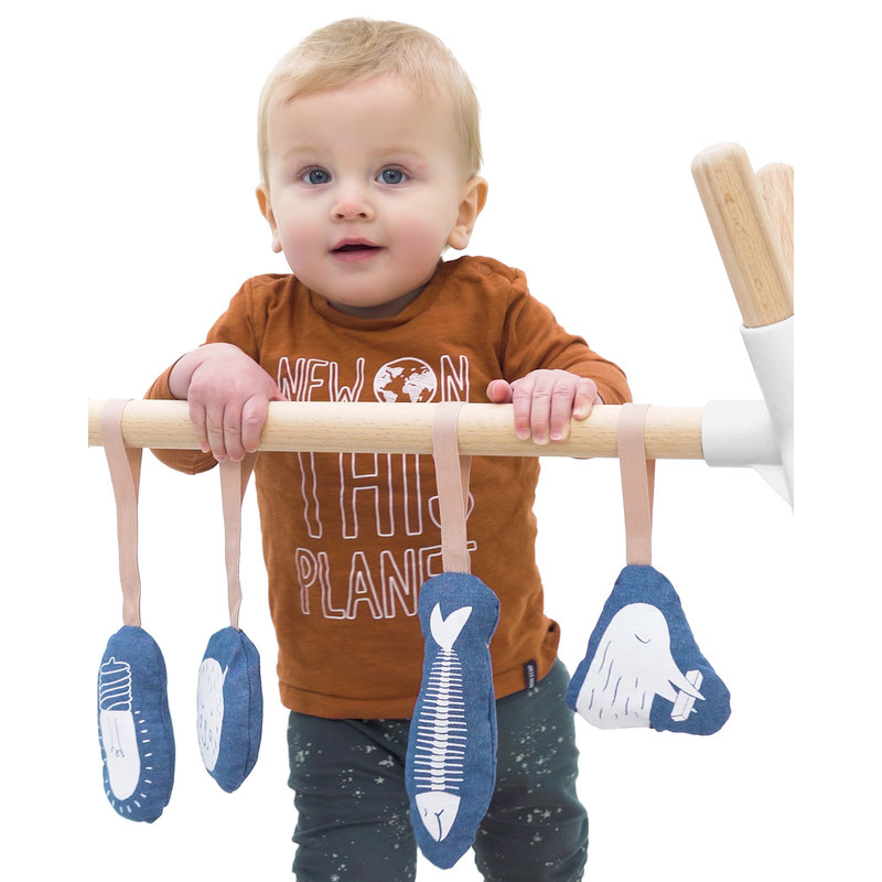 Hangloose Baby PlayGym